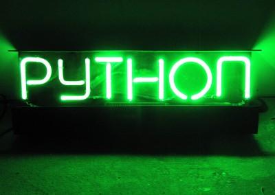 Python Neon Sign