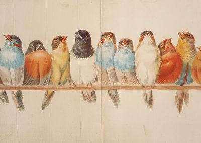 Giacomelli Lithograph Chicago Tribune 1900